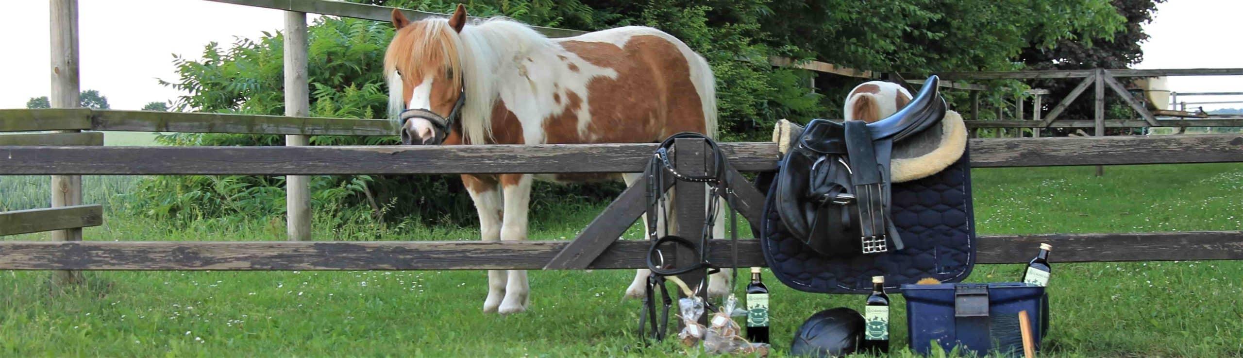 Kräuterelexier für Pferde
