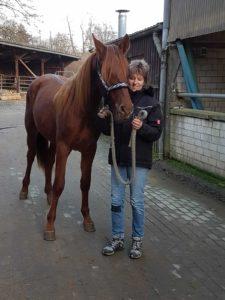 Eine Frau hält ihr braunes Pferd am Strick. Sie stehen auf einem Hof umgeben von Pferdeställen.